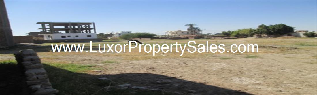 Opportunity to buy a plot of land Ramla (plot 1)